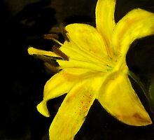 Yellow Daylily Photo-Realistic Painting by Masaad Amoodi