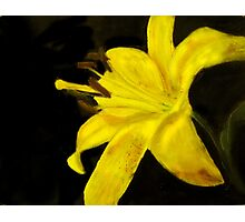 Yellow Daylily Photo-Realistic Painting Photographic Print