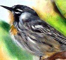 Little Bird Painting by Masaad Amoodi
