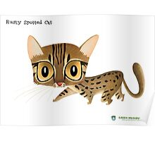 Rusty Spotted Cat Poster