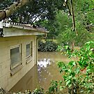 Brisbane Floods 2011 - Inundation - Out Back by Neil Ross