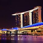 Singapore Marina Bay Sands By Night by 104paul