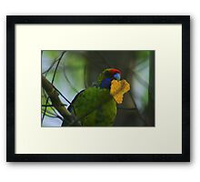 You can't be sent to the Colony, you are already in it Framed Print