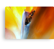 This Must Bee Paradise Canvas Print