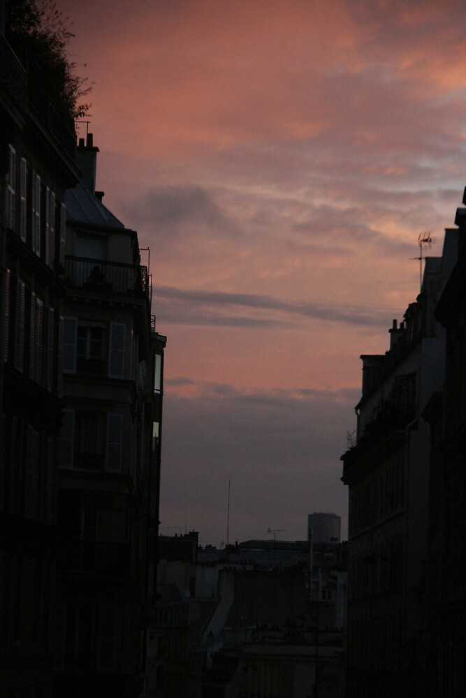 Sunset in Paris by Virginia Kelser Jones