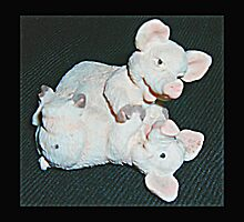 Playful Pigs by Dawn (Paris) Gillies