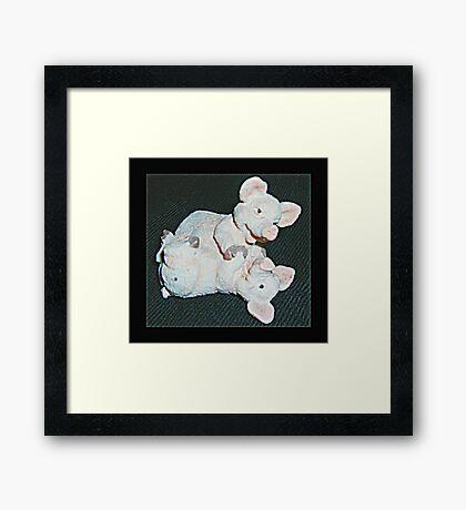 Playful Pigs Framed Print