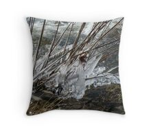 Spring Spectacles Throw Pillow