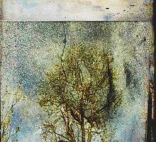 Not Yet Spring by Anne  McGinn