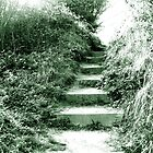 Path Way by gemsie89