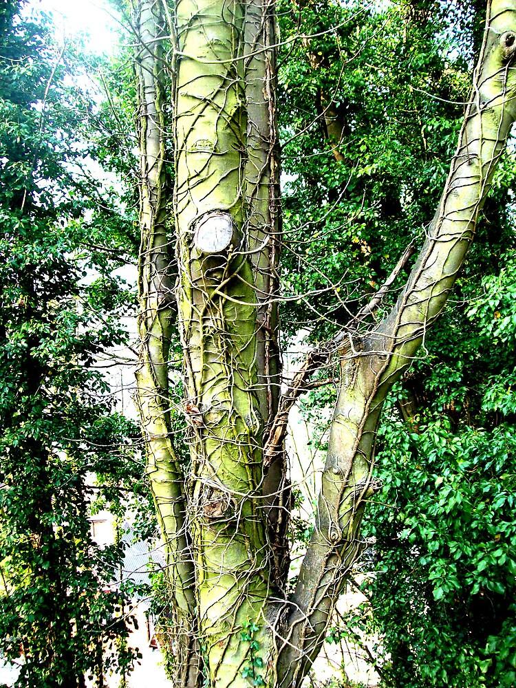 Tree by gemsie89