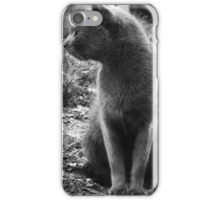 The Grey Stray: Looking Away iPhone Case/Skin