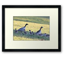Family Day Framed Print