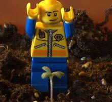 Leggo Farmer by Riddick4x5