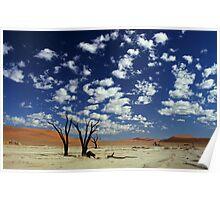 Dead vlei, Namib desert. Poster