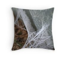 Web tethered rocks Throw Pillow