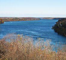 Along The Strait Of Niagara by artwhiz47