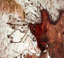 Bison  by elisabeth tainsh