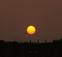 Big ol' Sun  by larry flewers