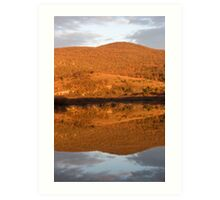 Landscape perfectly reflected in Palsko lake Art Print