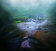 Shades of Tranquillity by Felix Haryanto