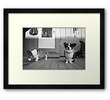 My Gimp Puppy Framed Print