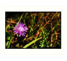 Purple Needles Art Print