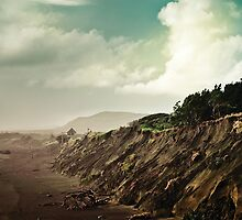 Muriwai Beach Landscape - New Zealand by Cubagallery