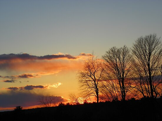Sunset and Trees by MaryinMaine