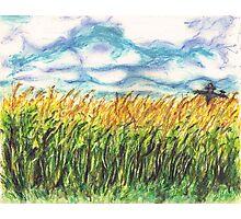 Lonely Scarecrow Photographic Print