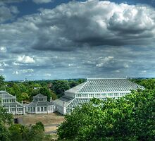 Temperate House Kew Gardens From Treetop Walkway by John Hare