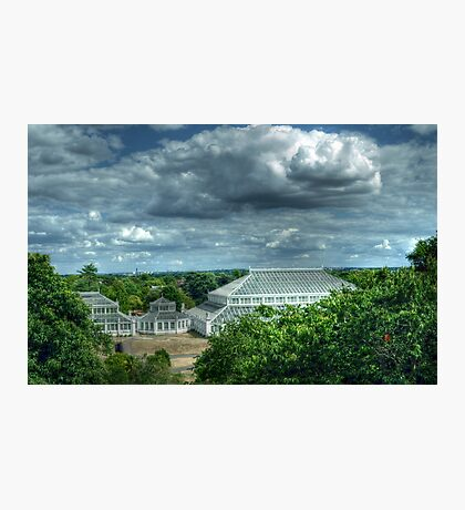 Temperate House Kew Gardens From Treetop Walkway Photographic Print