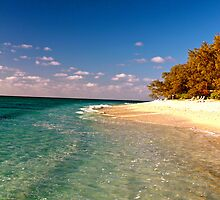 Resort Lagoon - Lady Elliot Island  by AmyLee2694