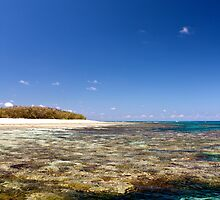 Western Side Low Tide - Lady Elliot Island  by AmyLee2694