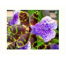 Purple Spotted Flower Art Print