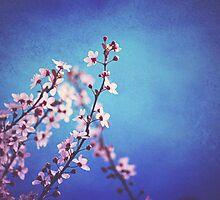 A Spring Day by kamieo