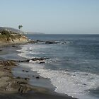 Laguna Beach: View from Heisler Park by E.E. Jacks