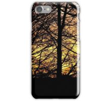 Sunset Through The Trees 2 iPhone Case/Skin