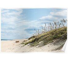 Beach Grass on Dunes Poster