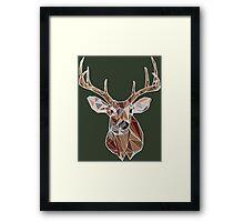 Geometric Buck Framed Print