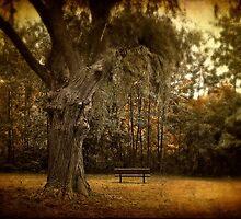 Autumn Respite by Jessica Jenney