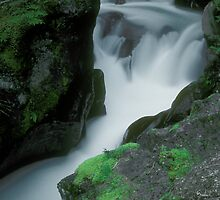 Avalanche Falls by photogirlusa23