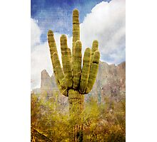 Saguaro Cactus in Lost Dutchman State Park Photographic Print