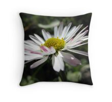 FIRST DAISY OF SPRING Throw Pillow