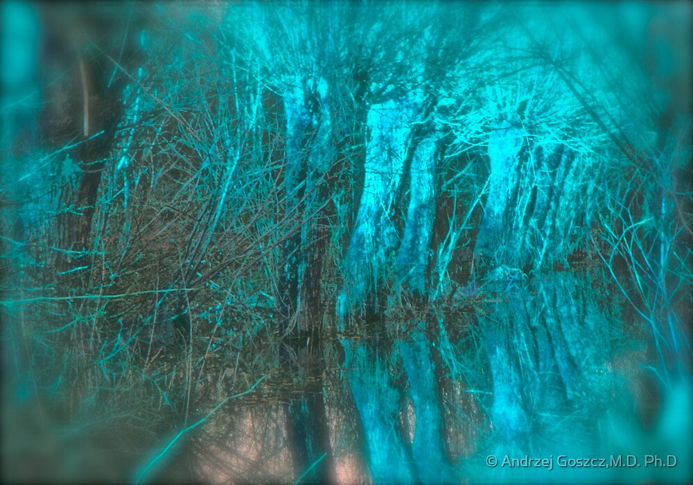 Psychedelic Art   -   Willows  Landscape   . Skawa River . Poland . by Brown Sugar. F*Favorites: 12 Views: 1870 . Woooows !!!!  Thank you friends ! by © Andrzej Goszcz,M.D. Ph.D