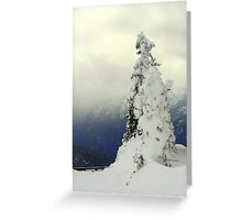 """A Blast of Winter"" Greeting Card"