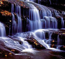 Fall leaves in a mountain waterfalls by ©  Paul W. Faust