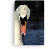 Looking at you... only you... Canvas Print