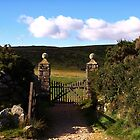 Ball Gate, Dartmoor by moor2sea