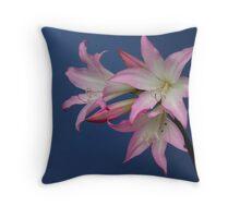 Amaryllis Belladonna Lily Throw Pillow